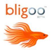 Bligoo_300.jpg